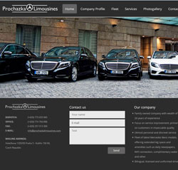 Luxury transportation throughout Europe. Fleet of latest Mercedes Benz models.